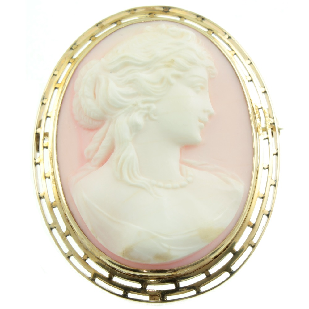 Pink and White Conch Shell Cameo Brooch